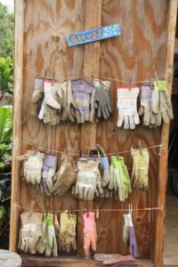 Gloves Handy
